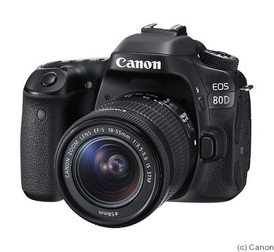 Canon: EOS 80D camera