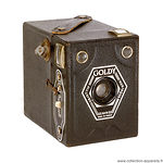 Goldstein: Goldy (colored) camera